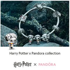 Welkom in de magische wereld van Harry Potter